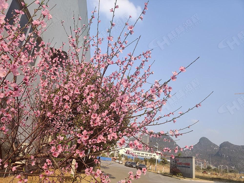 广西桂林鸿程机械厂里花团锦簇,满园春色,邀您一起共赏春景,共商大计!